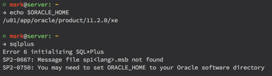 Oracle 11gR2 Express Edition on Ubuntu 14.04 using OhMyZsh